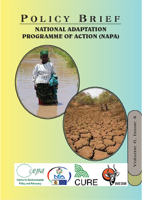 Policy Brief on National Adaptation Programme of Action