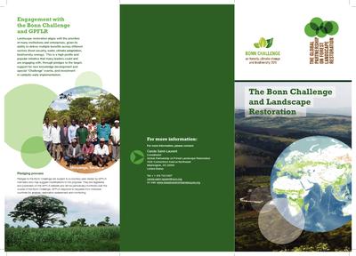 The Bonn Challenge and Landscape Restoration